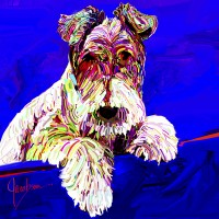 Dog Portraits, Wired Hair Fox Terrier