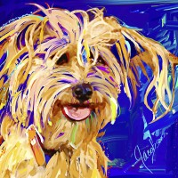 Dog Portraits, artist Jackie Jacobson