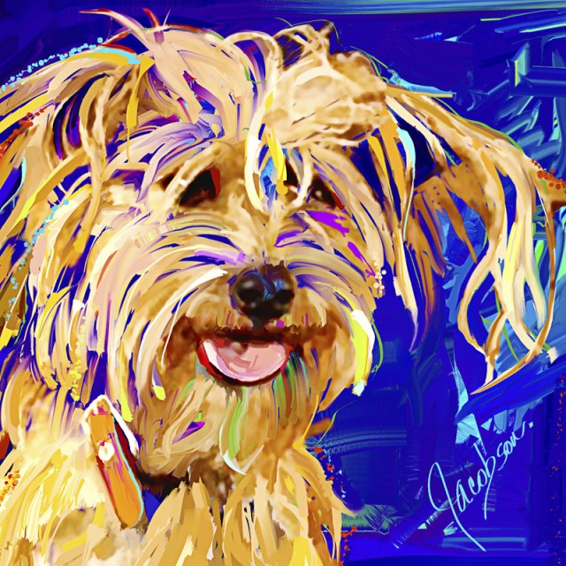 Dog Portraits - dog breeds  - uncertain