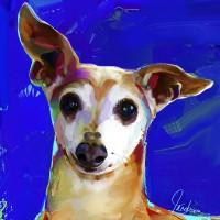 Dog Paintings, Italian Greyhound
