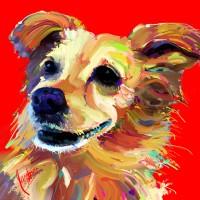 Dog Portraits, Jackie Jacobson