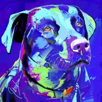 Dog Portraits, Lab, Pointer