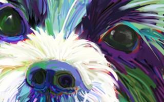 Dog Paintings - Jackie Jacobson
