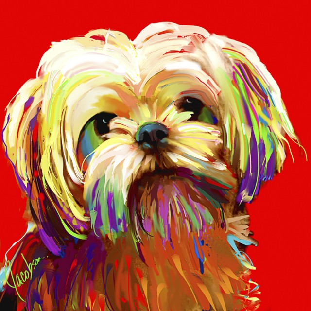 Dog Portraits - Dog Breeds