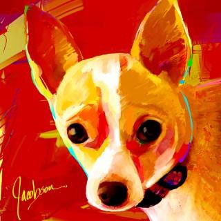 Chihuahuas - artist Jackie Jacobson