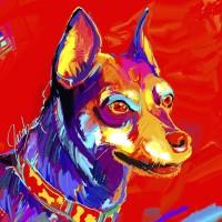 Dog Portraits, Minature Pinscher