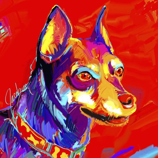 Subborn Dogs - Dog Breed Minature Pinscher