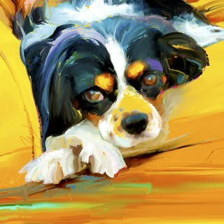 Dog Paintings - King Charles Spaniel