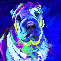 Dog Paintings, Shar pei