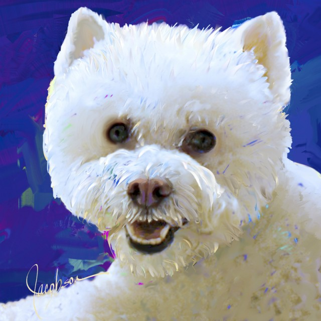 Dog Portraits - Bijon-Westie