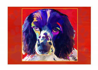 Note cards - Cocker Spaniel