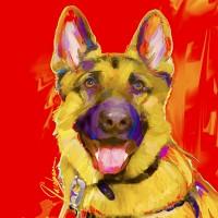 Dog Portraits, German Shepherd