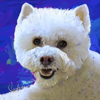 Dog Paintings-Bichon-Westie