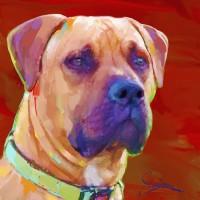 Dog Paintings - Boxer Mastif