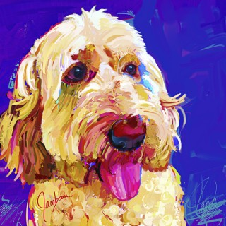 Dog Paintings - Golden Doodle